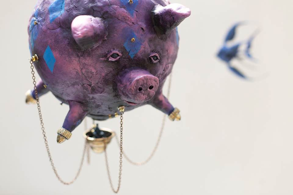 Flight Pig, photo coutesy Cooper Reid